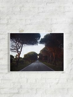 """N268 BY KRISTIAN HOLM. """"The most Western road of Europe. N268 in Portugal takes you everywhere and is still some kind of beautiful dead end."""" https://paper-collective.com/product/n268/"""