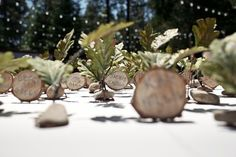 Woody placecards - for a fairy forest wedding.