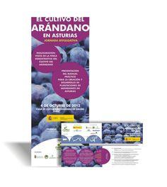 Diseño de material promocional (X-banner y díptico) para jornada sobre el cultivo del arándano - 2012