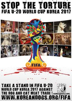 https://flic.kr/p/SkkwcW | The Fédération Internationale de Football Association (FIFA) : Take a stand in FIFA U-20 World Cup Korea 2017 against the dog and cat meat trade! | koreandogs.org/fifa/