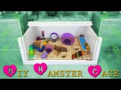 How to build a DIY hamster cage! *Instructions* - YouTube