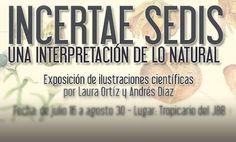 Exposición de Ilustración. INCERTAE SEDIS – Una interpretación desde lo natural - Diario Colectivo Bicicleta, ilustración y artes visuales de Colombia y Latinoamerica
