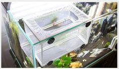>> Click to Buy << 2016 Hanging Fry Baby Fish Hatchery Incubator Net Fish Breeding Isolation Box Aquarium Accessory Fish and Aquatic Pet Supplies #Affiliate