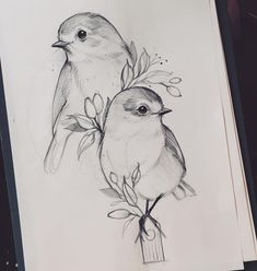 Art Discover 3 birds instead of 2 Pencil Drawings Of Animals Bff Drawings Cool Art Drawings Art Drawings Sketches Animal Sketches Love Birds Drawing Bird Sketch Arte Pop Acrylic Art Girl Drawing Sketches, Girly Drawings, Art Drawings Sketches Simple, Simple Pencil Drawings, Bird Pencil Drawing, 2 Pencil, Pencil Drawings Of Animals, Animal Sketches, Realistic Animal Drawings
