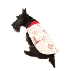 Have your dog channel their inner Parisian this holiday with the chic Parisian Red Dog Jacket!
