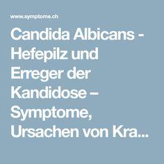 Candida Albicans - Hefepilz und Erreger der Kandidose – Symptome, Ursachen von Krankheiten