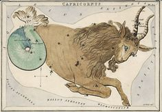 Capricornus ---Individual hand-colored engraved celestial cards from the original set of 32 , each showing one or more constellations, and having perforated holes of various sizes (as issued) through which to view the stars of various magnitudes comprising the constellation figures shown on the cards when held to a light source. In the early 19th century, a set of cards called Urania's Mirror was produced to view the constellations as seen in the Northern Sky in London.
