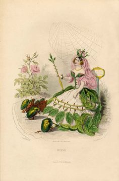 personified flowers from the 1867 edition of Les Fleurs Animées