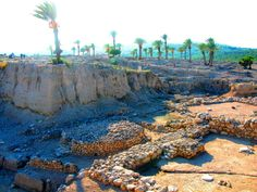 Where the sacrifices took place — in Megiddo, Israel.