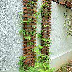 Outdoor Plants, Outdoor Gardens, Indoor Outdoor, Outdoor Decor, Large Planters, Hanging Planters, Wall Mounted Planters Outdoor, Plant Wall, Plant Decor