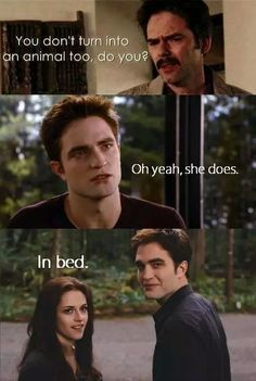Find images and videos about funny, lol and twilight on We Heart It - the app to get lost in what you love. Twilight Scenes, Twilight Saga Quotes, Twilight Jokes, Twilight Saga Series, Twilight Book, Twilight Pictures, Edward Cullen, Dc Memes, Funny Memes