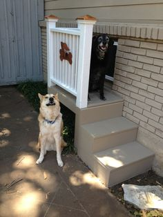 "To solver our dog door dilemma at our pier and beam house, we made this ""dog"" porch to match our back porch. The dogs love it!"