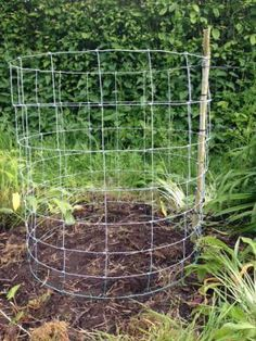 Growing Pumpkins & Squashes Vertically | Permaculture Magazine
