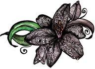 lace tattoo tiger lily