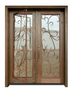 Glass and Iron Front Door - contemporary - front doors - by ...