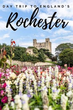 Things to Do in Rochester