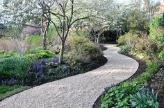 The Benefits of an Edge, Thinking Outside the Boxwood, Metal edging creating a meandering path