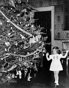 Caroline Kennedy, daughter of the President and First Lady, peeks at her first White House Christmas tree on Dec.