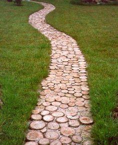 Camino troncos