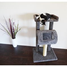 If you've got a busy kitty on your hands, the New Cat Condos Premiere Cat Climber Cat Tree is sure to keep his attention. The multi-level design. Cat Tree Condo, Cat Condo, Cat Climber, Cat Climbing Tree, Modern Cat Furniture, Cat Tunnel, Plush Carpet, Owning A Cat, Scratching Post