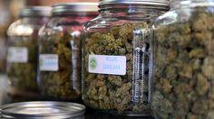 In Henndorf hat einen Laden eröffnet, der Cannabispflanzen Verkaufen soll. Die Polizei ist da zwischen gegangen, doch eventuell muss die Polizei nun die...