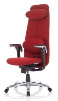 HAG Chair from our suppliers at Office Furniture Scene. Maintaining posture. http://www.officeworks.co.uk/