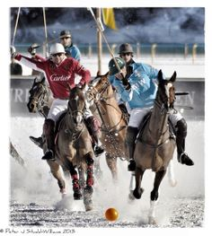 """""""Snow Polo World Cup 2013,"""" by Digital-Shutterbug, via Flickr -- Had no idea this even existed! If you want to see many, many more pins, check out """"Equestrian game of Snow Polo"""" here: http://www.pinterest.com/jurisprude/equestrian-game-of-snow-polo/"""