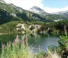 Monte Pirin, reserva natural (Bulgaria)