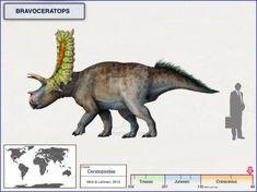 Bravoceratops by cisiopurple Dinosaur Art, Dinosaur Fossils, Jurassic Park World, Happy Tree Friends, Prehistoric Creatures, Monster Hunter, Natural History, Naruto Minato, Beagle