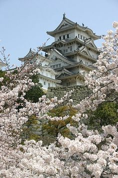 Himeji-jo, Japan's most majestic surviving castle
