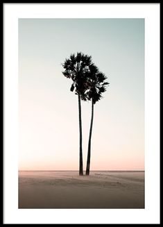 Find inspiration for creating a picture wall of posters and art prints. Endless inspiration for gallery walls and inspiring decor. Create a gallery wall with framed art from Desenio. Photo Pop Art, Photo Wall Collage, Picture Wall, Modern Art Prints, Wall Art Prints, Poster Prints, Palm Tree Art, Palm Trees, Poster 40x50