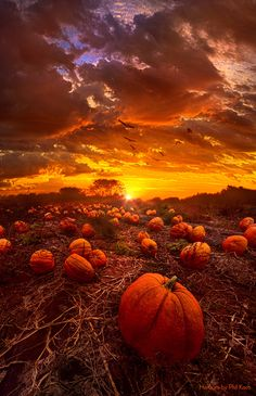 """This Our Town of Halloween"" Wisconsin Horizons By Phil Koch. http://phil-koch.artistwebsites.com"