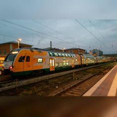 #Merkels #refugees #train  #igersbahn#train_nerds #theyards_candid #trains_worldwide #railfans_of_instagram #eisenbahnbilder #eisenbahnfotografie #railways_of_our_world #deutschebahn #deutschebahn_fansite #rail_barons #ig_trainspotting #trainspotter #trainspotting #rail #railway #bahn #train #rail #railway #train #trains_worldwide #rsa_trains #_rsa_theyards #ig_trainspotting #dbundich #railstagram #dbbahn #heyfred_lookatthis #transport #Bavaria #passau #odeg by supermariotf