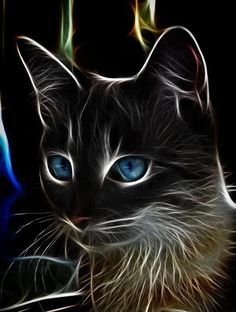cat by Viktor Korostynski Another stunning animal-fractal art piece. The blue eyes contrast so neatly with the face. I love cats and I love this art!