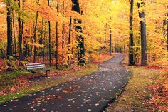 autumn in michigan -The most beautiful time