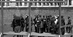 The adjusting of the ropes on the gallows to the Lincoln Assassination Conspirators: Mary Surratt; Lewis Paine (Powell); David Herold; & George Atzerodt on a very hot July 7, 1865. Photography by Alexander Gardner, in life, Lincoln's favorite photographer.  *s*