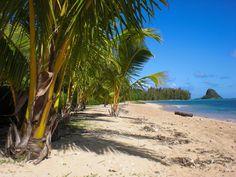 Kualoa Regional Park Oahu Hi Top Tips Before You Go With Photos Tripadvisor