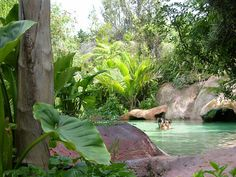 The Lost Spring Thermal Pools - Whitianga, New Zealand. North Island.