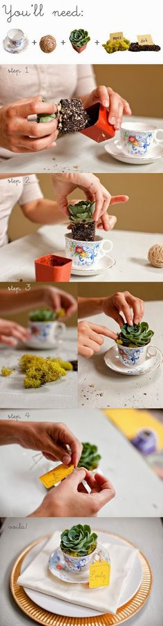 make table settings using a succulent plant and small vintage tea cup DIY plante grasse + tasse + mousse / tea cup flower- this would be cute to put in your garden Cacti And Succulents, Planting Succulents, Planting Flowers, Deco Nature, Cactus Y Suculentas, Container Gardening, Indoor Plants, House Plants, Flower Pots