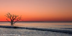 Landscape Photography Botany Bay At Sunrise Panorama by McAnany