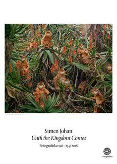 Simen Johan, Untitled #174   Fotografiska Posters Natural Phenomena, Sims, Fine Art, Landscape, Artist, Nature, Photography, Painting, Posters