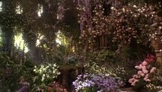 From the movie The Secret Garden