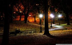 Night At The Park Wallpaper - The Wallpaper Background