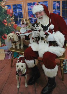 Pet Photos with Santa to raise money for shelter animals.