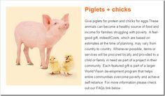 World Vision Christmas Gift Guide @DownshiftingPRO Wishlist - Piglets & Chicks #worldvisiongifts