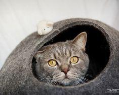 PET Bett / Bett Katze / Cat Höhle / Welpen Bett / Haus / Haustier Möbel Katze / cat Nickerchen Kokon. Gefilzte Eco freundliche Katze Bett XS, S, M, L oder XL Größen