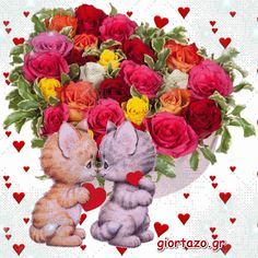 Beautiful Good Night Images, Beautiful Flowers Pictures, Flower Pictures, Beautiful Roses, Animals Beautiful, Valentines Day Wine, Valentine Special, Animated Heart, Love Coloring Pages