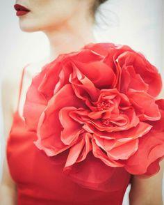 Rojos que florecen, flores en tres dimensiones
