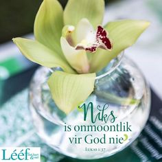 Positive Attitude Quotes, Thank You Lord, Love Me Quotes, Religious Quotes, Afrikaans, Inspirational Quotes, Positivity, God, My Love