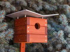 Modern Ralph Birdhouse  Sacramento, California: Inspired by the modern home designer Ralph Rapson, these sleek birdhouses feature sandblasted aluminum plates and harvest teak finished with natural linseed oil, which protects it from rain, mildew, and UV rays.  Read more: http://www.rd.com/slideshows/unique-bird-houses/view-all/#ixzz3jlVp0kOS
